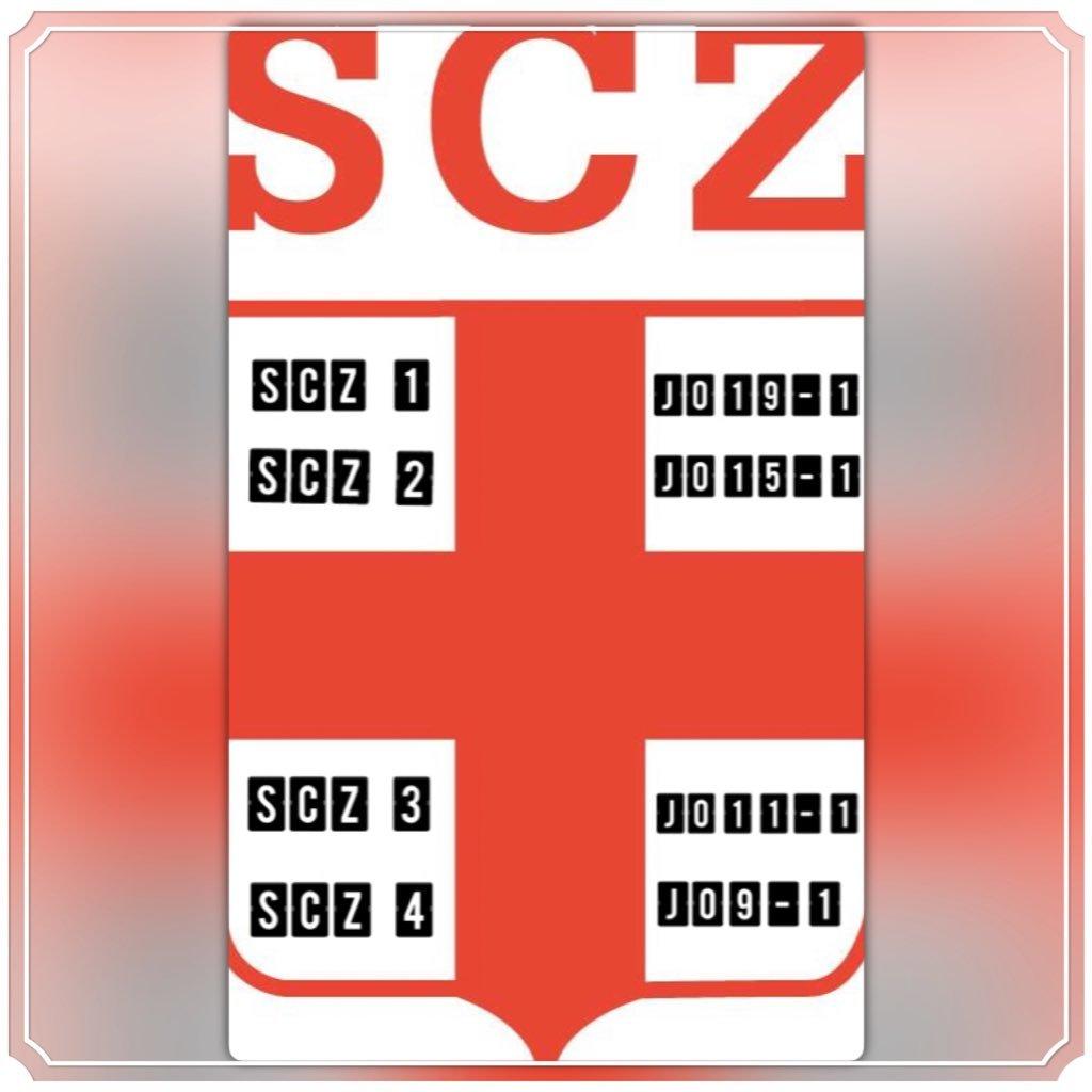 @scz_zoelen