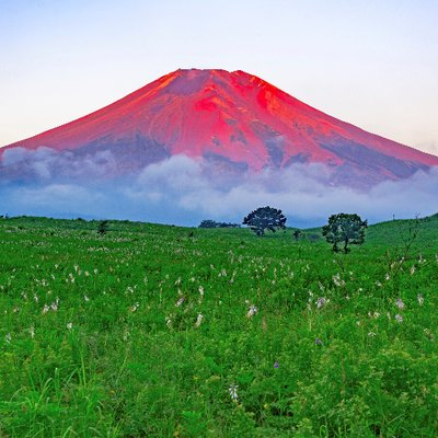雲海と富士山  富士山 https://t.co/iFlJfXWSow
