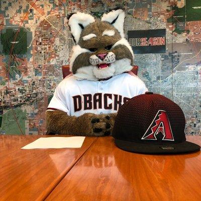 3d8003c6 D. Baxter the Bobcat (@DbacksBaxter)   Twitter