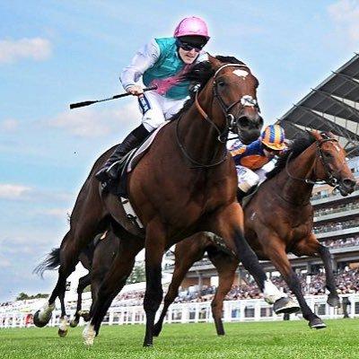 Banker horse betting betting sites uk list