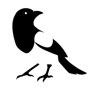 Image result for magpie cartoon