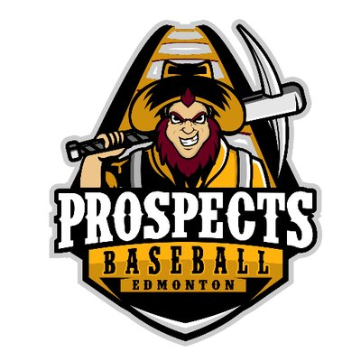 Image result for edmonton prospects logo