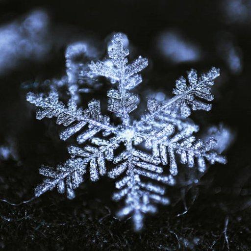 SnowflakeDruid