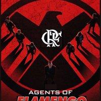 Agent of Flamengo (@RCSaraiva) Twitter profile photo