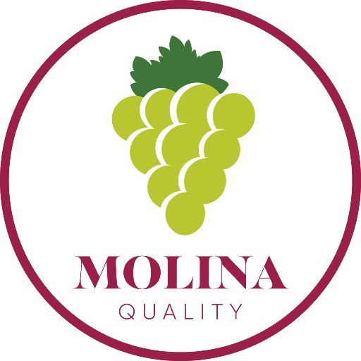 @Molina_Group