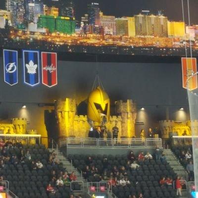 Vegas NHL Hockey