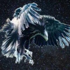 falconmlo