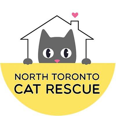 Toronto North Cat Rescue