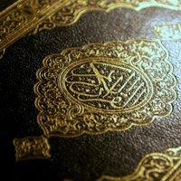 Daily Quran Reminders
