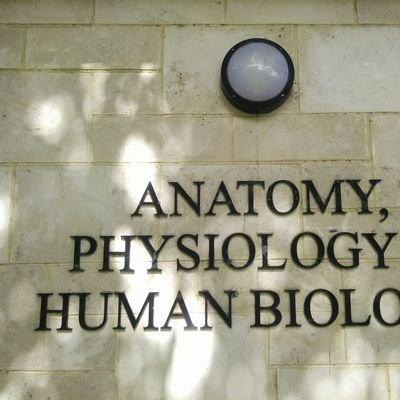 UWA Anatomy & Human Biology (@ANHB_UWA) | Twitter