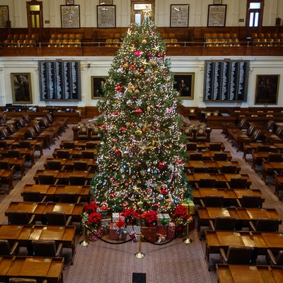 texas house christmas tree - How To Keep Christmas Tree From Drying Out
