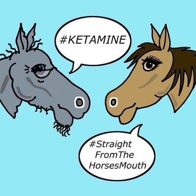 ket horsesmouth kethorsesmouth twitter