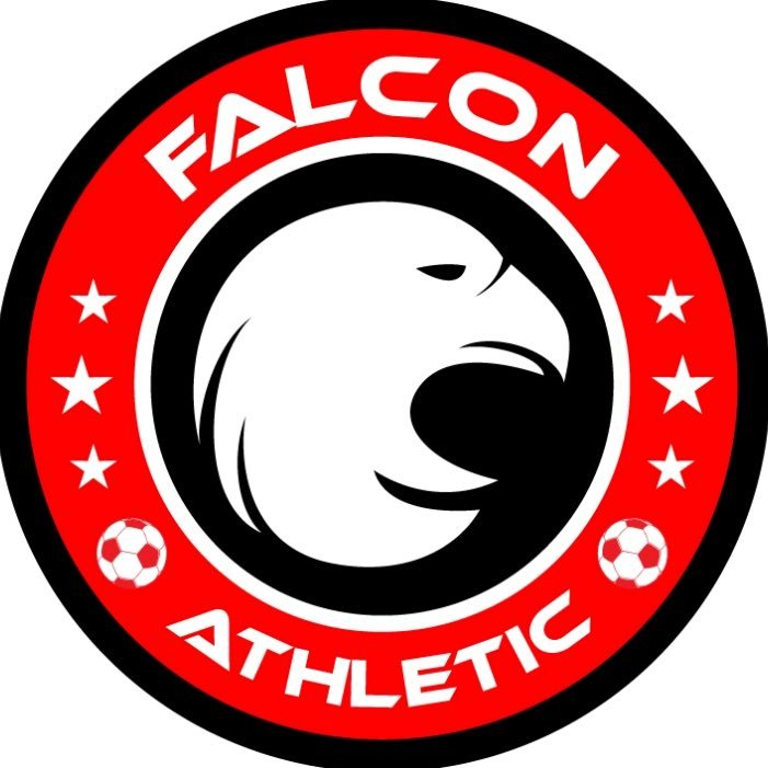 Image result for falcon athletic