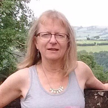 Sue Everett (@suesustainable) Twitter profile photo