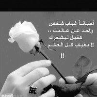 Ebtesam00369622