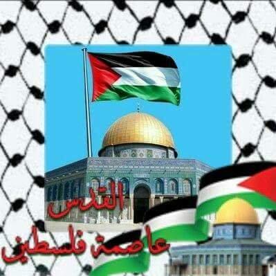 🇵🇸dado فلسطينية وأفتخر