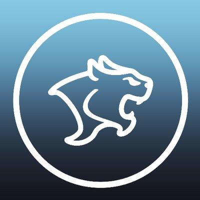 Kingston cougars