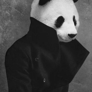 Tertipu Bitcoin Panda Rp 1,2 M, Korban Melapor ke Polda | Bengkulu Ekspress