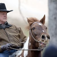 Roy Moore's Horse