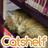 catshelf