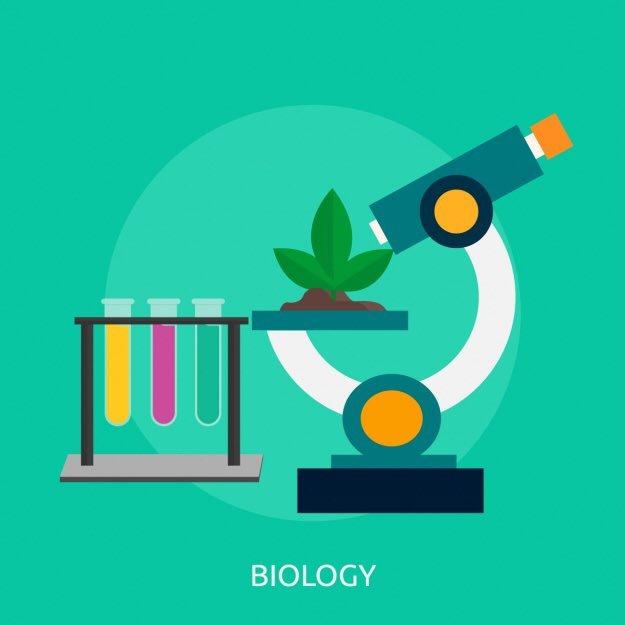 علم الأحياء الجزيئية بالانجليزي 6