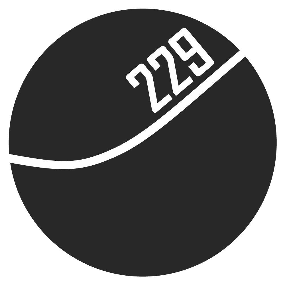 Vision 229