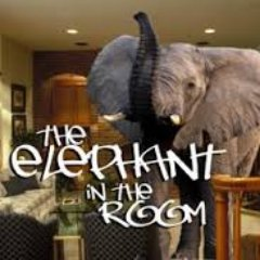 Elephant in the room (@LetsfixthisNZ)   Twitter