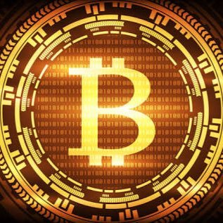 @Bitcoin_beg