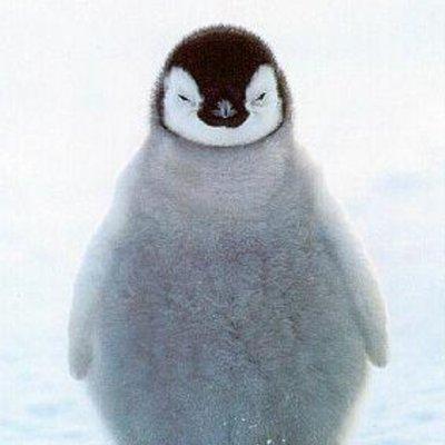 ペンギンペンタ