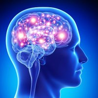 The Mind Unguent