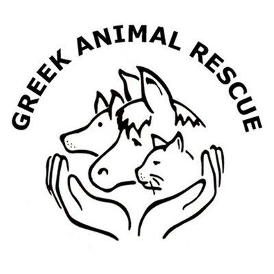 Image of: Greek Greek Animal Rescue Twitter Greek Animal Rescue On Twitter
