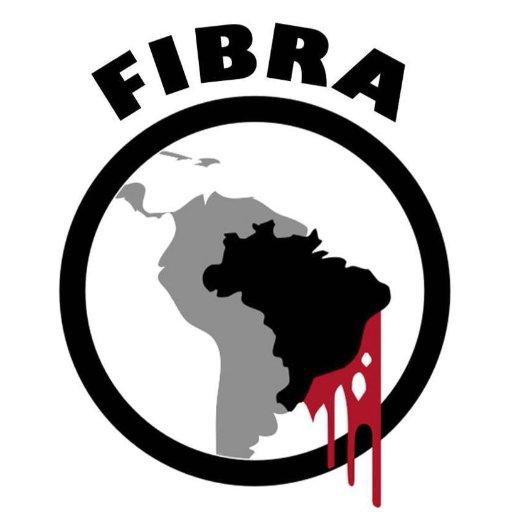 Frente Internacional de Brasileiros contra o golpe