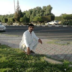 Aliakbar Orakzai's Twitter Profile Picture