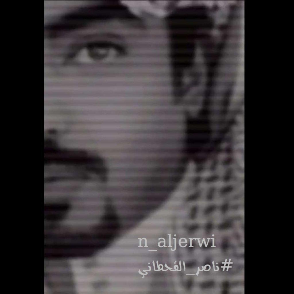 profile image of n_aljerwi