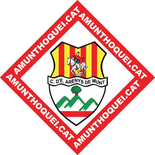 El darrer ple de l'ajuntament va aprovar una subvenció de 12 mil euros per al Centre d'Esports Hoquei Patins