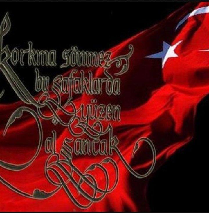 Mustafa Baygın مصطفى