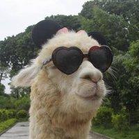 Llama_Strudel