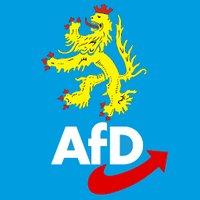 AfD_Pfalz