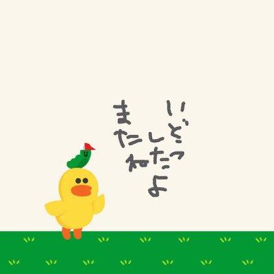 かにちゃん @ka_a_ko_