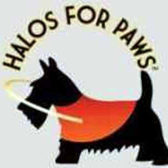 Halos For Paws Halosforpaws Twitter