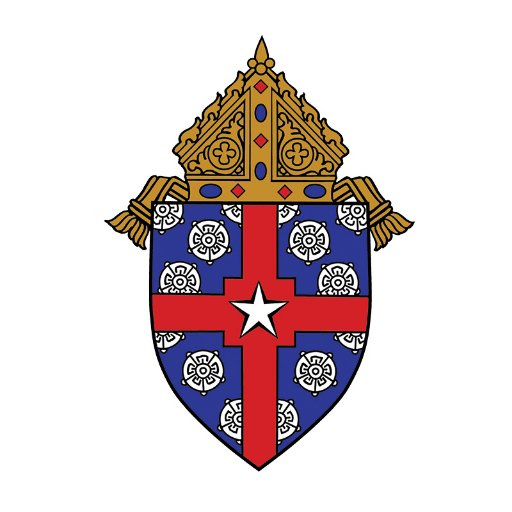 Image result for archbishop of Houston texas