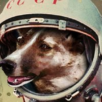 Space Dog! 🌹