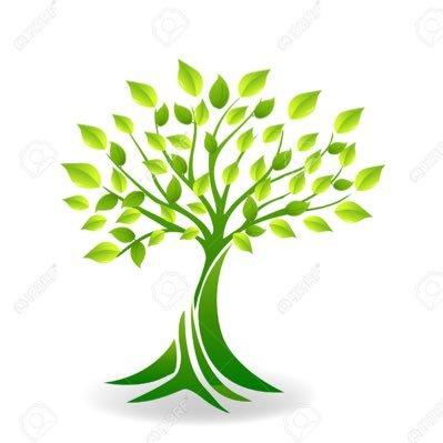 تصميم شجرة العائلة رسم شجرة إلكترونية Anas7676 Twitter