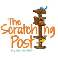The Scratching Post