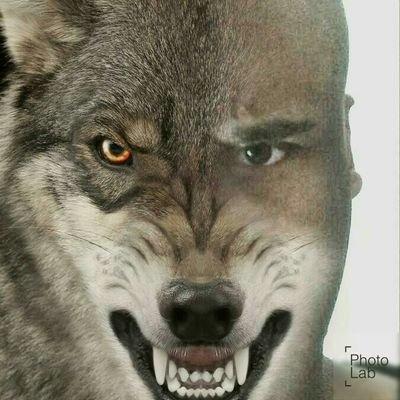 Demon Wolf  🐺