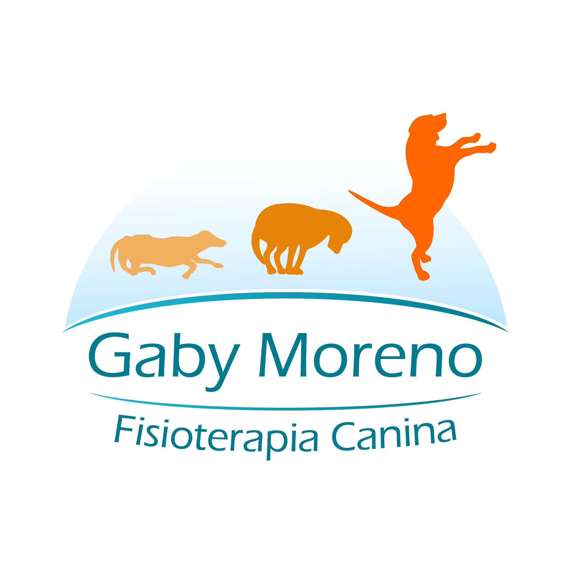 Fisioterapia Canina Leon on Twitter: \