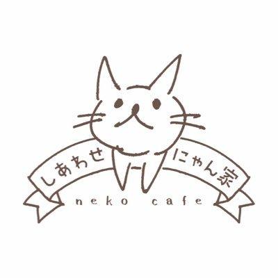 譲渡型保護猫カフェしあわせにゃん家