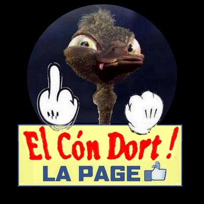 el_con_dort