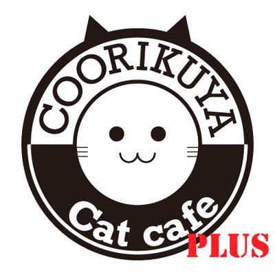 coorikuya_shibuya @cat_shibuya