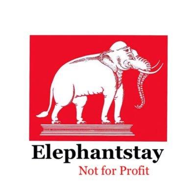@Elephantstay